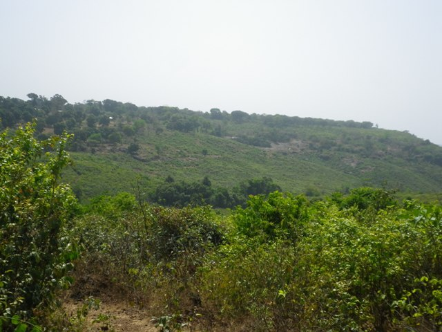Village de Pétoye en arrière-plan, à gauche