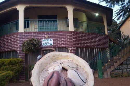 Article : Le « Musée du Fouta », mémoire vivante du patrimoine culturel peul
